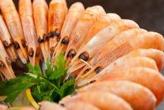 Shrimps with lemon Stock Photography