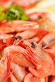 Shrimps with lemon Stock Photography
