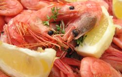 Shrimps with lemon slices Royalty Free Stock Photo