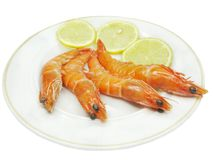Shrimps with lemon slices Stock Photos