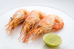 Shrimps and lemon in white plate Royalty Free Stock Photo