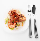 Shrimps and lettuce appetizer Royalty Free Stock Image