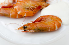 Shrimps mayonnaise Stock Photos