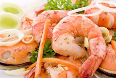 Shrimps and Mussels royalty free stock images