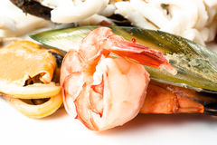 Shrimps, mussels and squid. Seafood Royalty Free Stock Photography
