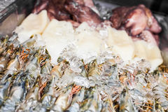 Shrimps and other Seafood in a Restaurant Counter Royalty Free Stock Images