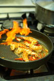 Shrimps on the pan Stock Image