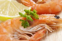 Shrimps with parsley and lemon Royalty Free Stock Image