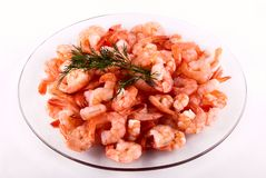 Shrimps on a plate Royalty Free Stock Photography