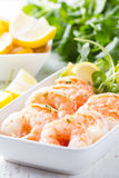 Shrimps prawns with fresh herbs and lemon Royalty Free Stock Photo