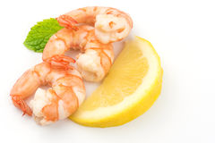 Shrimps. Prawns isolated on a White Background .Seafood. Shrimps. Prawns isolated on a White Background. Seafood Stock Images