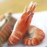 Shrimps. Prawns isolated on a White Background. Seafood Stock Image