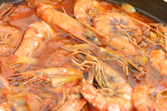 Shrimps in red Stock Images