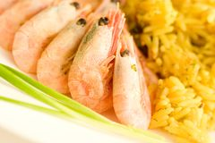 Shrimps and rice. Some shrimps and rice on the white table with green onion. Closeup royalty free stock photos