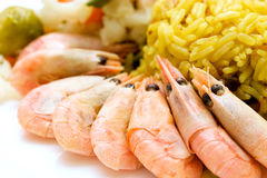 Shrimps and rice. Some shrimps and rice on the white table. Closeup Stock Image