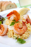 Shrimps Risotto Stock Images