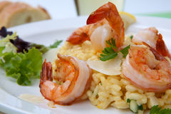 Shrimps Risotto Stock Photography