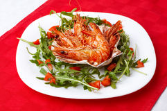 Shrimps and rocket salad Stock Photos
