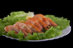 Shrimps on salad Royalty Free Stock Photography
