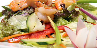Shrimps on salad. Shrimps on a spit with fresh mixed salad royalty free stock photography