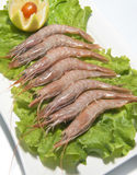 Shrimps with salad Royalty Free Stock Photography