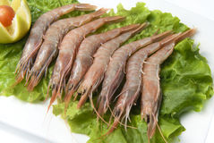 Shrimps with salad Royalty Free Stock Images