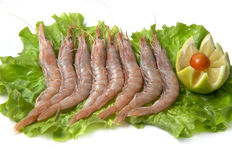 Shrimps with salad Stock Photography