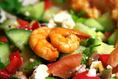 Shrimps on salad. Close shot of shrimps on salad with tomatoes, cucumbers and red peppers plus feta, onion and olive pieces stock photography