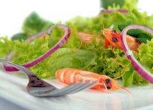 Shrimps salad close-up Royalty Free Stock Image