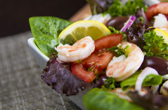 Shrimps Salad close up Royalty Free Stock Image