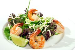 Shrimps on salad isolated Stock Photos