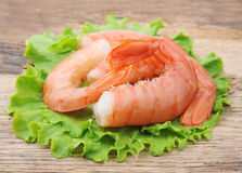 Shrimps with salad lettuce Royalty Free Stock Image