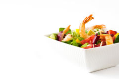 Shrimps salad with mango and avocado isolated Stock Photography