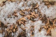 Shrimps on sale at Greek island Kalymnos market Stock Photo