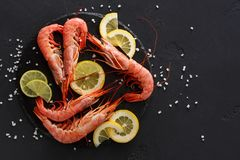 Shrimps with salt and lemon on black background Royalty Free Stock Photography