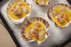 Shrimps and Scallops in Saffron sauce Stock Image