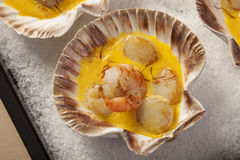 Shrimps and Scallops in Saffron sauce Stock Photos