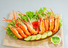 Shrimps barbecue seafood on dish  Stock Photos