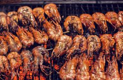 Shrimps barbecue grilled on roaster and fire. Shrimps Seafood barbecue grilled on roaster and fire royalty free stock images