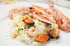 Shrimps and seafood risotto Stock Images