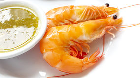 The Shrimps with Seafood Sauce , Cooked, Boiled Royalty Free Stock Image