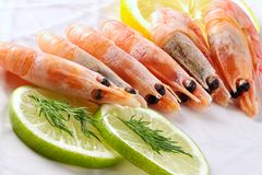 Shrimps seasoned by lemon and lime Stock Photos