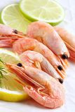 Shrimps seasoned by lemon and lime Royalty Free Stock Photography