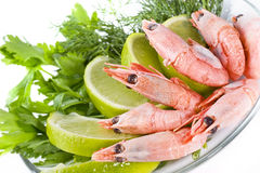 Shrimps served with lime Royalty Free Stock Images