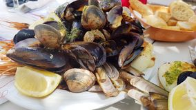 Shrimps and shellfish. With fresh lemon Royalty Free Stock Image