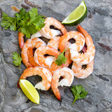 Shrimps on Slate Top View with Lime and Cilantro royalty free stock photography