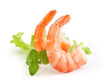 Shrimps tails Stock Image
