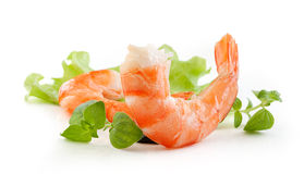 Shrimps tails Royalty Free Stock Photo