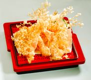 Shrimps tempura isolated  Royalty Free Stock Photo