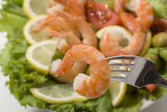 Shrimps and vegetables. Sea product shrimps and lettuce olive lemon tomato Royalty Free Stock Photo